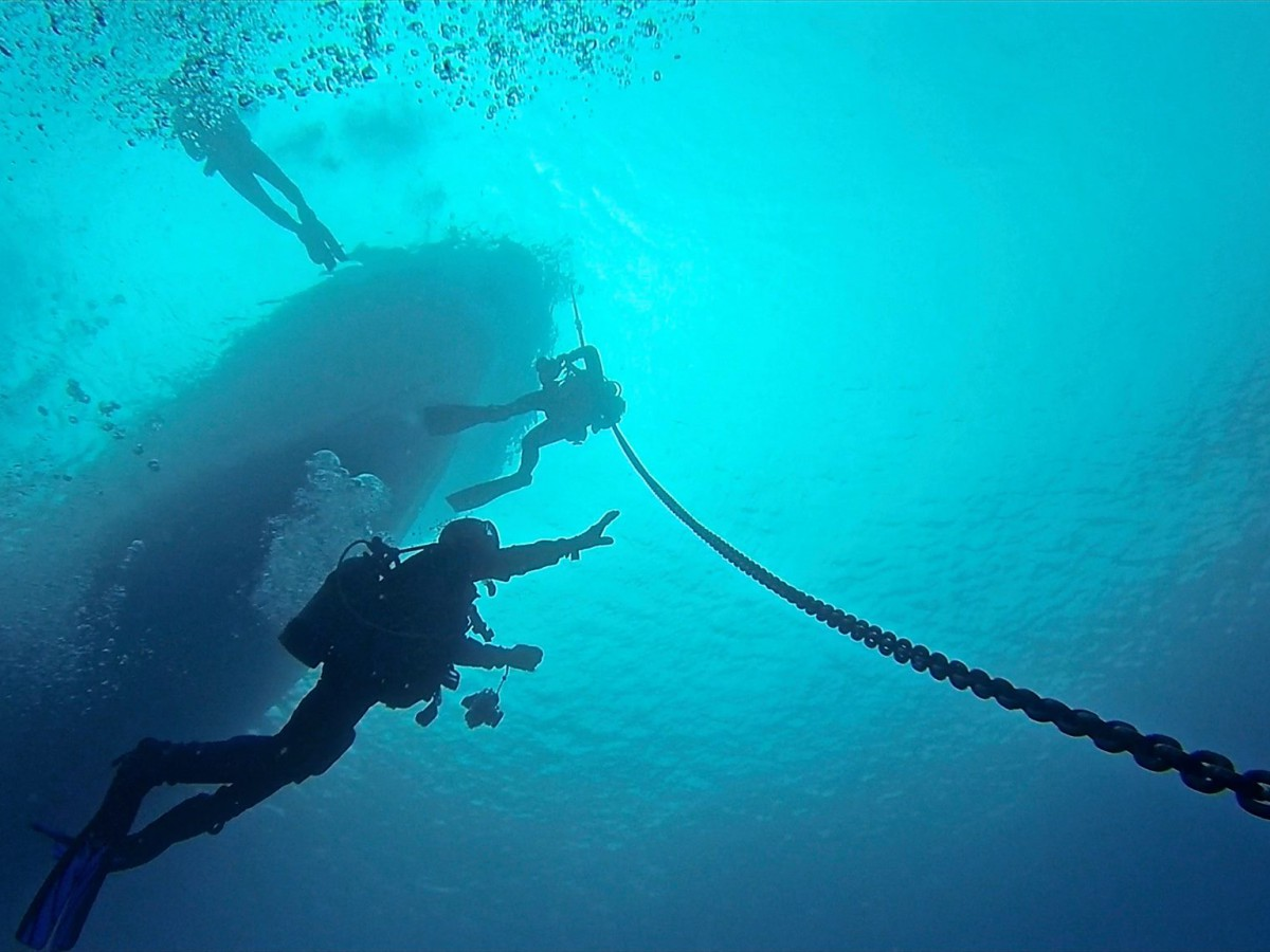 """""""Trident Rising"""" - Ascending to the surface after diving Trident Point aka Cape Cortes off Catalina Island. — with Chris Freeman, Ra Buck, Ben Hofileña, Ben Burnett and Barnacle Busters at Cape Cortes, Catalina."""